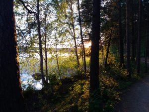 Psykologi Jyväskylä, Ympäristökriisi tunteet, Ympäristöahdistus, Ilmastoahdistus, Psykologi Jyväskylä, Kestävä kehitys, Ekopsykologia, Ekososiaalinen hyvinvointi, psykologi luonto, psykologi ympäristö